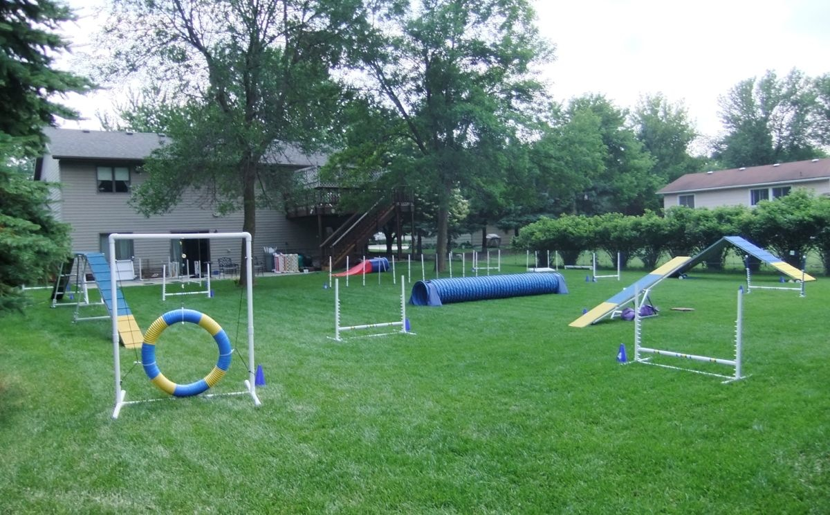 Small Dog Obstacle Course Equipment